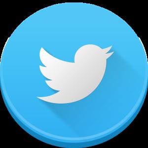 icono twitter 2